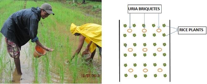 #15.5.1 Urea brickets