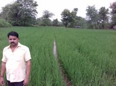 10 Deepak Ghodvinde Sarmal