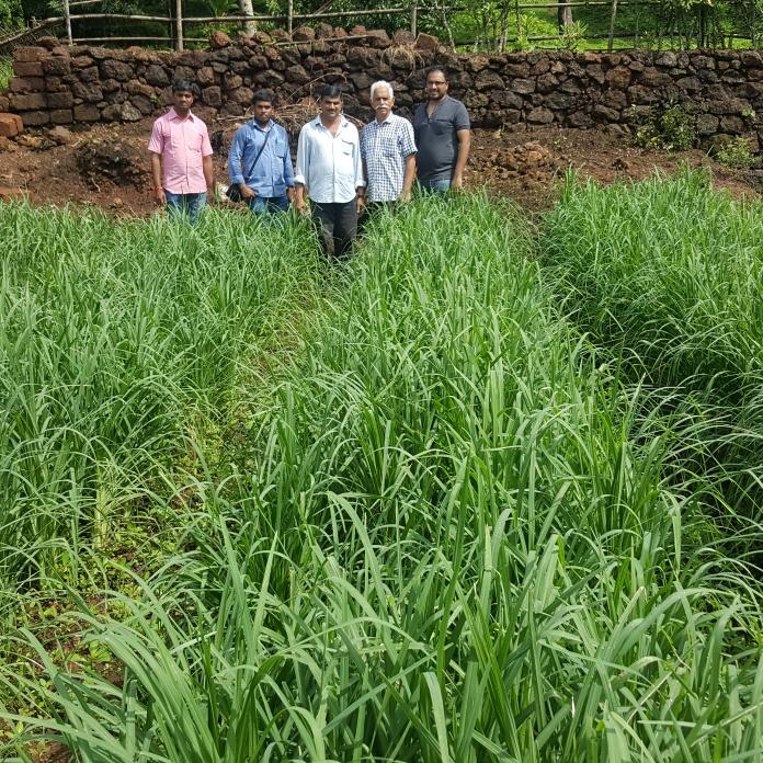Shri Milind Vaidya, Ril, Ratnagiri
