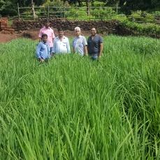Shri. Milind Vaidya, Ril, Ratnagiri