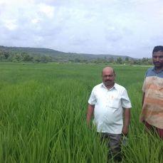 Shri Vijay Gotad, Pomendi, Ratnagiri