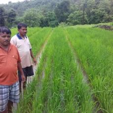 Shri. Mahendra Kadam, Dugave, Chiplun, Ratnagiri