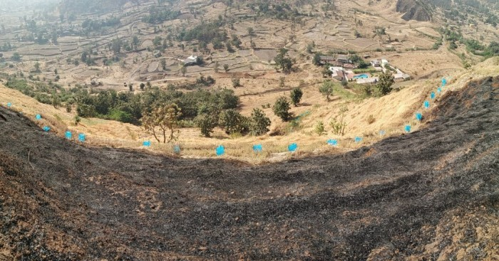 4 the fire did not cross the svt fire line