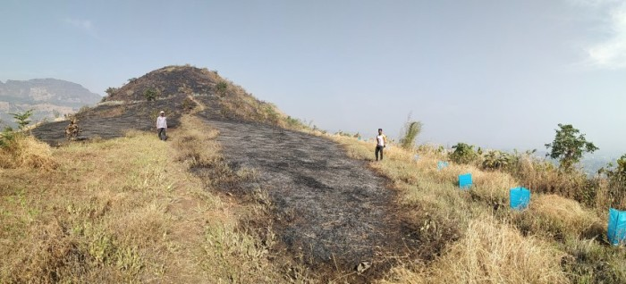 5 most of the places svt anti fire belt didn't allow fire to cross over