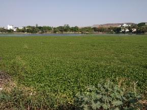 Salim Ali Lake Aurangabad