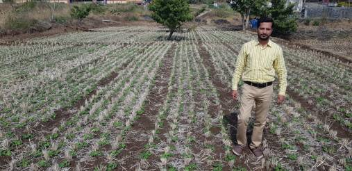 Mr. Kiran Yadav, Bhor, Pune (Groundnut by SRT))
