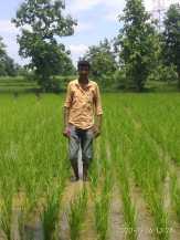 Prabhakar Gomase Gunthara Tahsil Bhandara