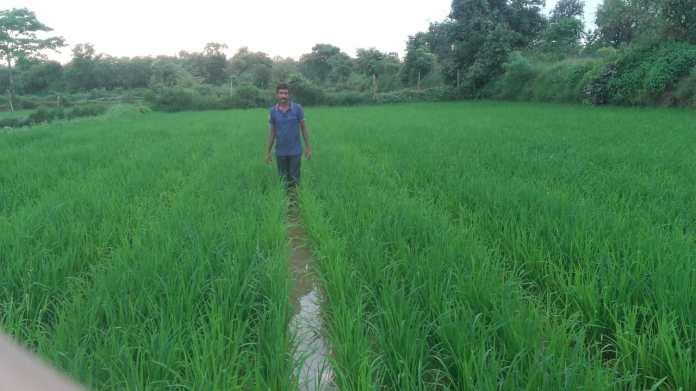 Satish Ramji Meshram Dhobisarad Deori Gondia